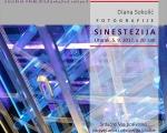 Synesthesia DS Principij 01