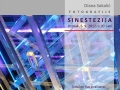 Sinestezija DS Principij 01